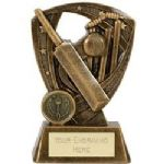 Cricket Trophy A4024